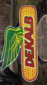 dekalb  seed corn kernels